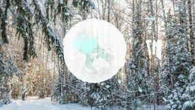 CINEMAGRAPH, 1080p, nieve que cae en el bosque del invierno, lazo almacen de video