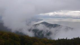Cinemagraph - vista de un mar cubierto en niebla metrajes