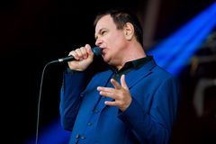 Cinerama (singer and songwriter) in concert at Primavera Sound 2015 Stock Photography
