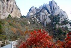 Cinese di Huangshan Fotografia Stock