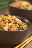 Cinese Fried Rice immagini stock