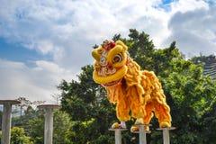 Cinese Lion Dance Fotografia Stock Libera da Diritti