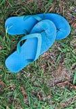 Cinghie blu consumate o Flip-flop contro l'erba logorata del prato inglese Immagine Stock Libera da Diritti