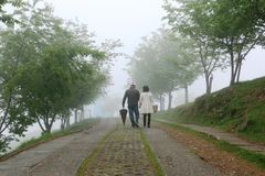 CINGJING FARM, TAIWAN - APRIL 10, 2015. Unidentified couple walking at Cingjing Farm, a famous sheep farm in high mountain at Taiwan on April 10, 2015. Mostly Royalty Free Stock Photos