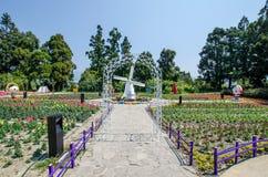 Cingjing Small Swiss Garden in Nantou,Taiwan. Stock Images
