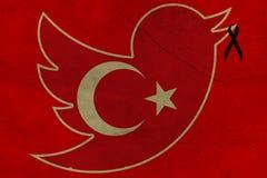 Cinguettio dei blocchetti della Turchia fotografie stock libere da diritti