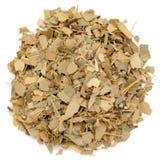 Cinnamomum tamala organico del taglio e secco di alloro della foglia Fotografie Stock Libere da Diritti