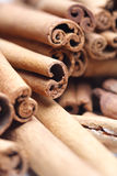 Cinnamon. Sticks in close up Royalty Free Stock Photos