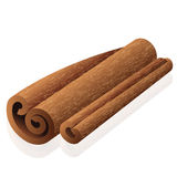 Cinnamon. Vector illustration of cinnamon - isolated Royalty Free Stock Image
