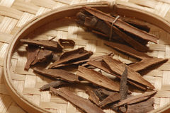 Cinnamon. Bark is widely used as a spice. It is principally employed in cookery as a condiment and flavoring material In medicine it acts like other volatile Stock Images