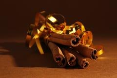 Cinnamon. Five burnches of christmas cinnamon stock image