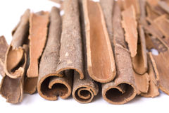 Cinnamon. Sticks on a white background Royalty Free Stock Image