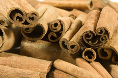Cinnamon. Dried cinnamon as a christmas spice Royalty Free Stock Photography