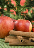 Cinnamon And Apples Stock Images