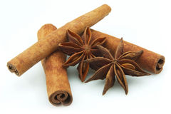 Cinnamon and an anise Royalty Free Stock Photos