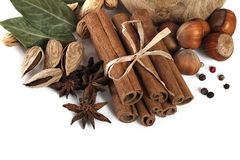 Cinnamon, anise, almond and laurus Stock Image
