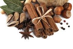 Cinnamon, anise, almond and laurus Stock Image