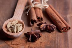 Cinnamon, anise, cardamom Stock Photography