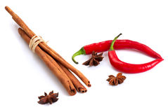 Cinnamon, anise and chilly Stock Photography