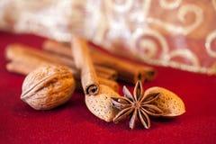 Cinnamon and anise, christmas time. Stock Photography