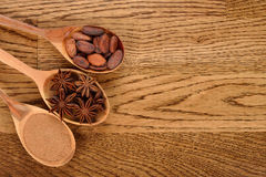 Cinnamon, anise and cocoa beans in wooden spoons Royalty Free Stock Photos