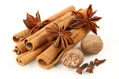 Cinnamon, anise, nutmeg, and cloves royalty free stock photography