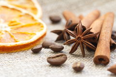 Cinnamon, anise, orange and nuts Royalty Free Stock Image