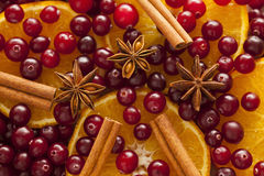 Cinnamon, anise, orange slices and cranberries Stock Images