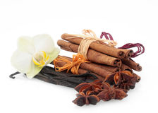 Cinnamon, anise, vanilla. Cinnamon, anise and vanilla on white Royalty Free Stock Photography