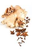 Cinnamon, anisetree, ginger plant Royalty Free Stock Image