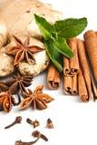 Cinnamon, anisetree, mint, ginger plant. Kind of sweet seasoning: cinnamon sticks, truestar anisetree, mint, ginger plant on white background Royalty Free Stock Photos