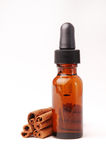 Cinnamon Aromatherapy. Cinnamon sticks next to a bottle of cinnamon essential oil Royalty Free Stock Images