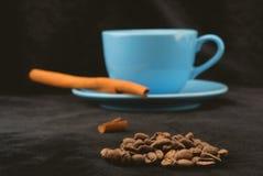 Cinnamon aromatherapy Stock Images