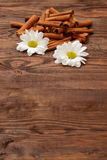 Cinnamon. As an aromatic spice to many dishes Stock Photo