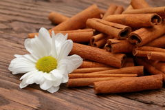 Cinnamon. As an aromatic spice to many dishes Stock Photos