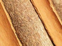Cinnamon bark Royalty Free Stock Photos