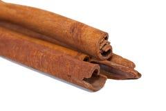 Cinnamon bark Royalty Free Stock Images