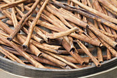 Cinnamon bark Royalty Free Stock Images