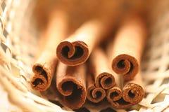 Cinnamon in basket Stock Image