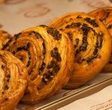 Cinnamon bun Stock Image