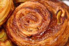 Cinnamon Bun with Apple royalty free stock images
