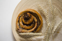 Cinnamon bun with spica Royalty Free Stock Photo