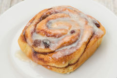 Cinnamon bun on a white plate Stock Images