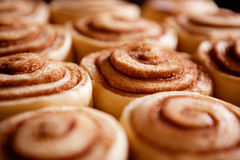 Free Cinnamon Buns Royalty Free Stock Photography - 9817457