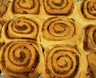 Cinnamon buns. Baked cinnamon buns with sugar and pecan nuts stock photography