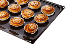 Cinnamon buns on a baking tray Stock Images
