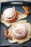 Cinnamon buns with chocolate in the blue tray Royalty Free Stock Photo