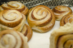 Cinnamon buns on display Stock Photography