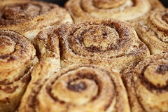 Cinnamon Buns Macro Royalty Free Stock Images