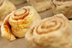 Cinnamon cakes. Close up of unbaked cinnamon cakes royalty free stock image